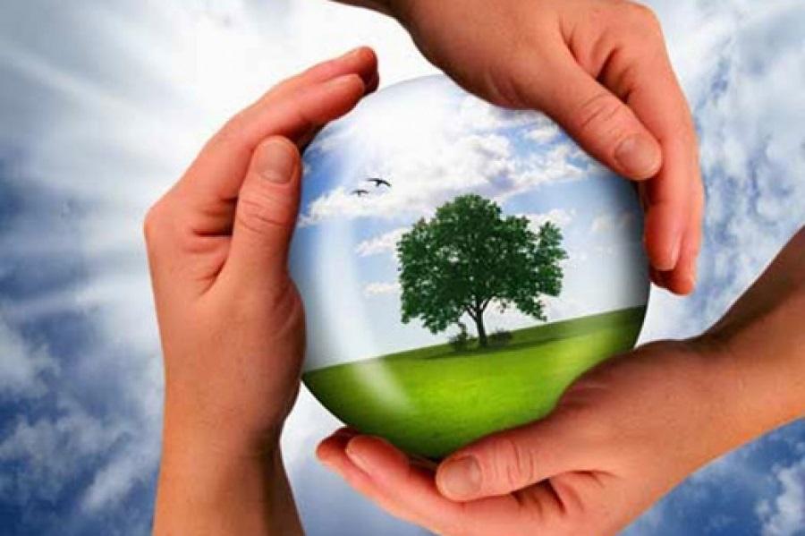 Giuseppe Grossi - La valorizzazione passa attraverso il risanamento ambientale